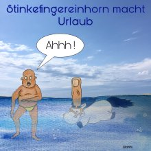 Stinkefingereinhorn - Anne Slobboda